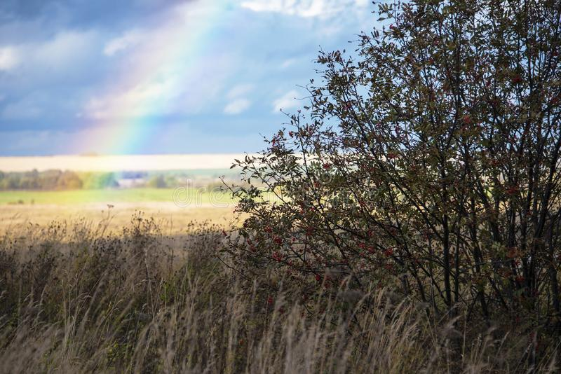 Regnbåge på bakgrunden av ett lantligt landskap för höst, Ryssland arkivfoto