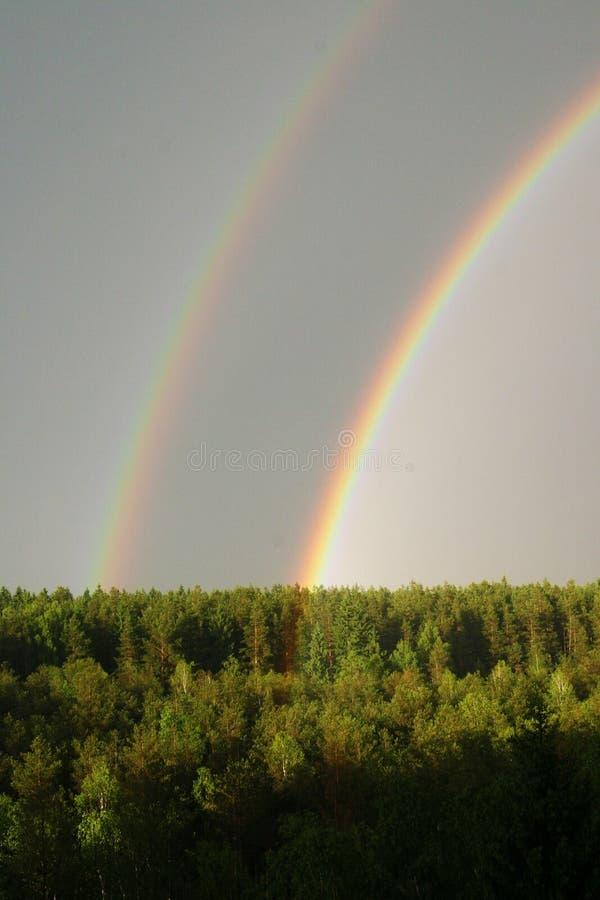 Regnbåge under forseten arkivbild