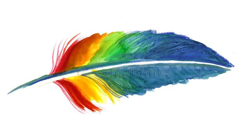 Regnbågefjäder vektor illustrationer