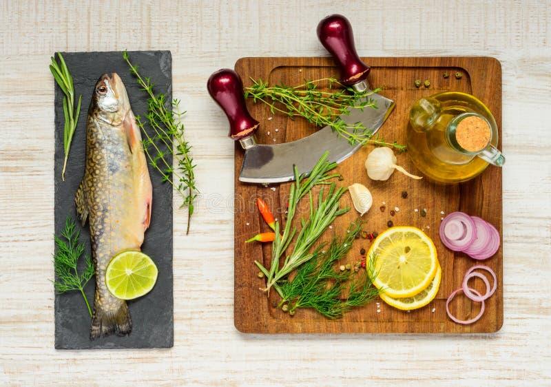 Regnbågeforell med matlagningingredienser fotografering för bildbyråer