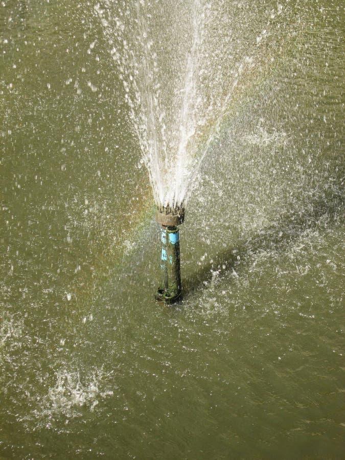 Regnbågen visas i sprej av springbrunnen royaltyfri foto