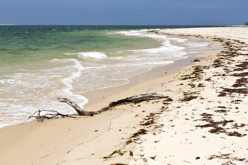 Regnbågestrand i Queensland fotografering för bildbyråer