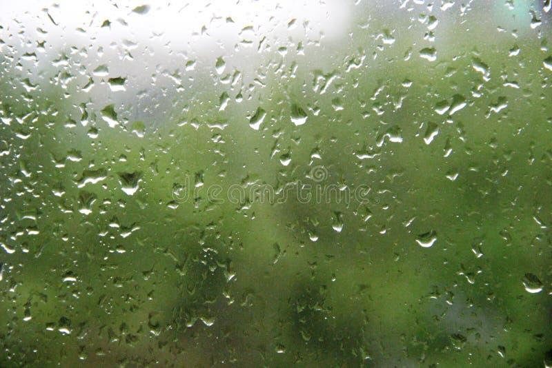 Regndroppar på det stora detaljerat för fönsterexponeringsglas Fönster med stora droppar av regn på en grön bakgrund royaltyfria foton