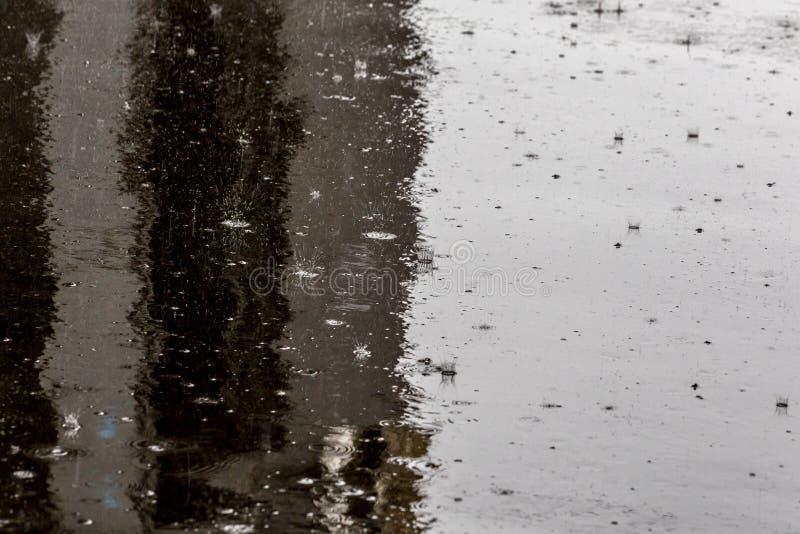 Regndroppar på skinande våt plan asfaltbakgrund med den selektiva fokusen royaltyfri bild