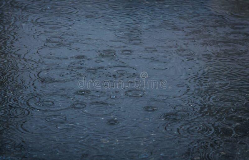 regndroppar som faller i poolen arkivfoto