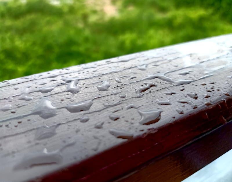 Regndroppe på träängbakgrund arkivfoto