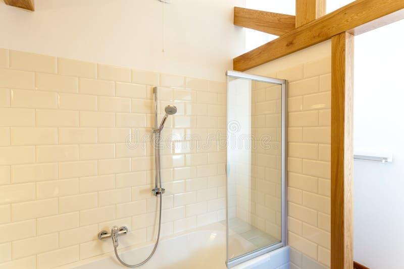 Regndusch i klassiskt badrum arkivfoto