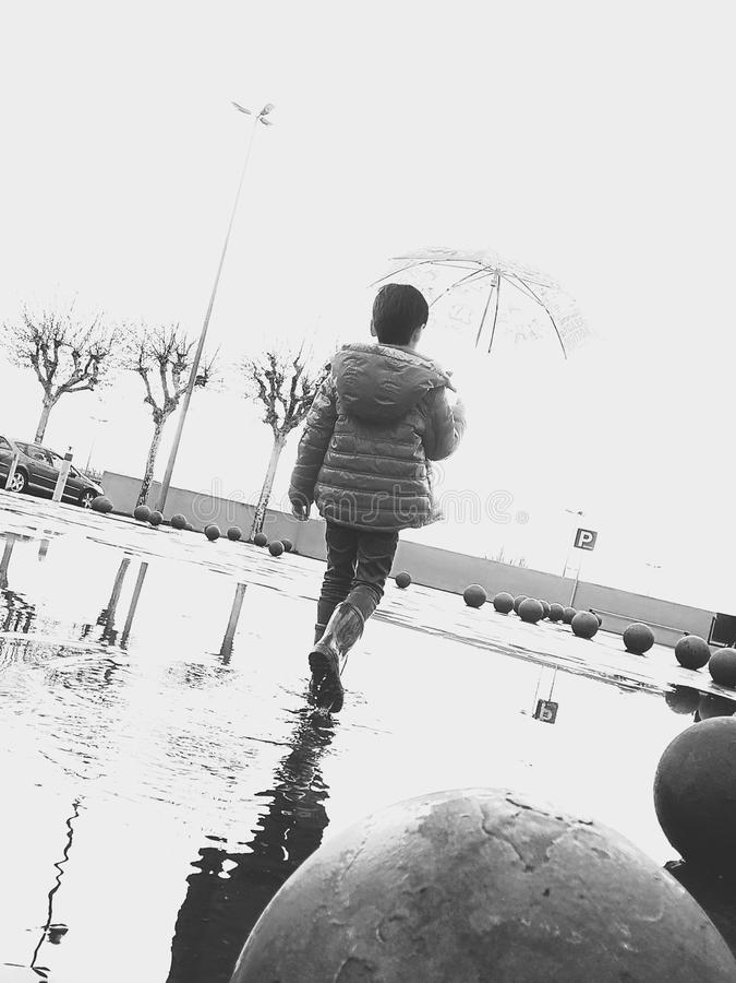Regnen des Tages lizenzfreie stockfotos