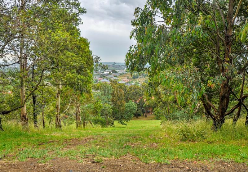 Regnerischer Tag im Park Wilson australien lizenzfreie stockfotografie