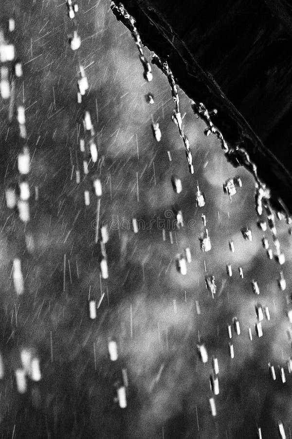 Regnerischer Tagesuno-Sommer stockfotografie