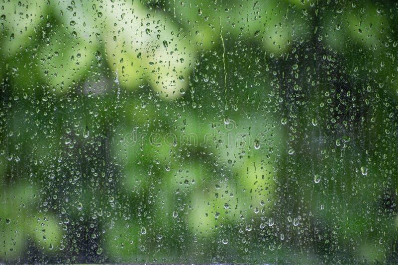 Regnfönster arkivfoto