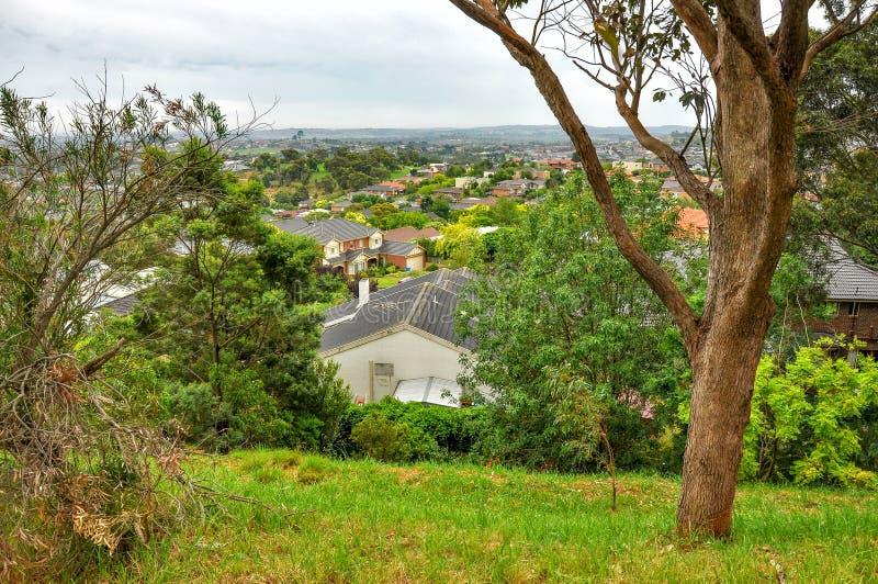 Regnig dag i parkera Wilson australasian arkivfoton
