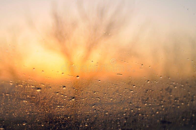 Regnig morgon på vägen arkivbilder
