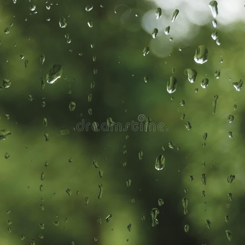 Regnig sommardag regndroppar på vått fönsterexponeringsglas, ljus abstrakt detalj för modell för bakgrund för regnvatten, makrocl arkivfoton