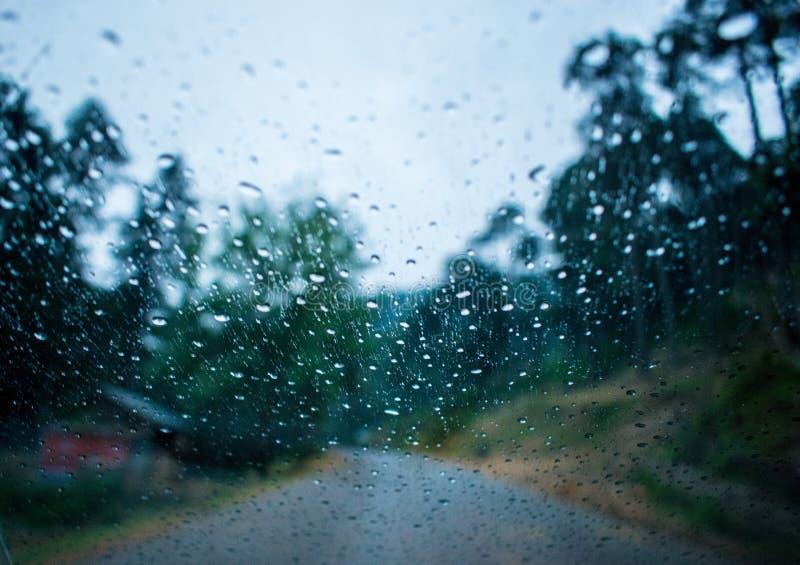 Regnig vindsköld royaltyfria foton