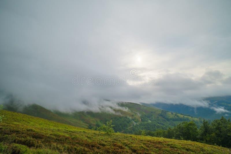 Regnmoln ovanför Carpathians Panorama av den Borzhava kanten av de ukrainska Carpathian bergen royaltyfri foto