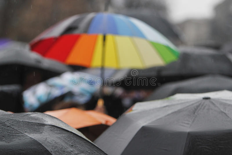 Regnparaply med regndroppar arkivfoton
