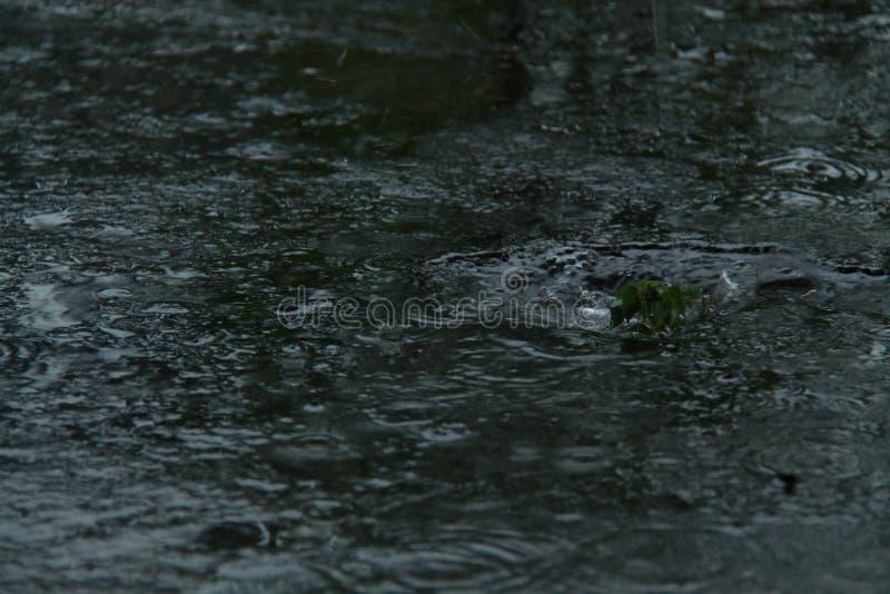 Regnvatten pölar, som uppstår i den regniga säsongen, version 2 arkivbilder