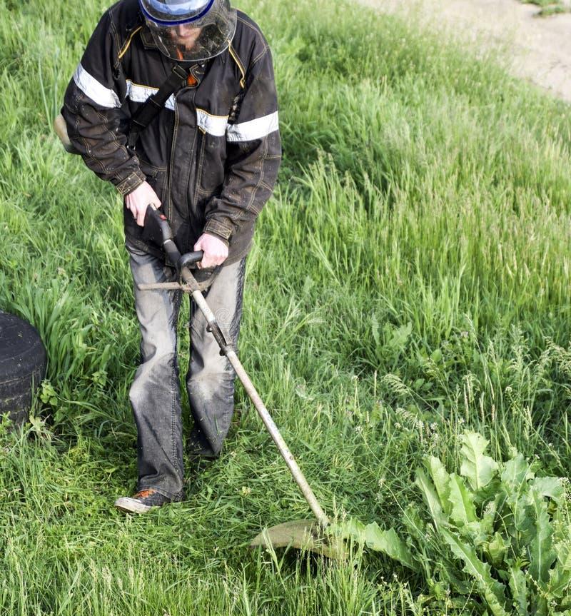 Regolatori di applicazione Erba verde di falciatura facendo uso di una linea di pesca regolatore fotografie stock libere da diritti