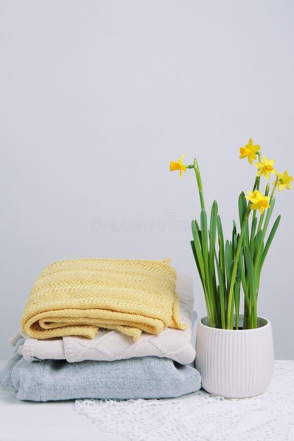 Regolazione dell'interno della tavola I narcisi fioriscono in un vaso con swe tricottato fotografia stock