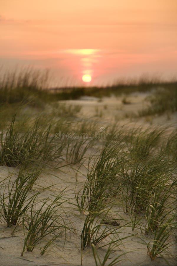 Regolazione di Sun sopra la spiaggia. immagini stock libere da diritti