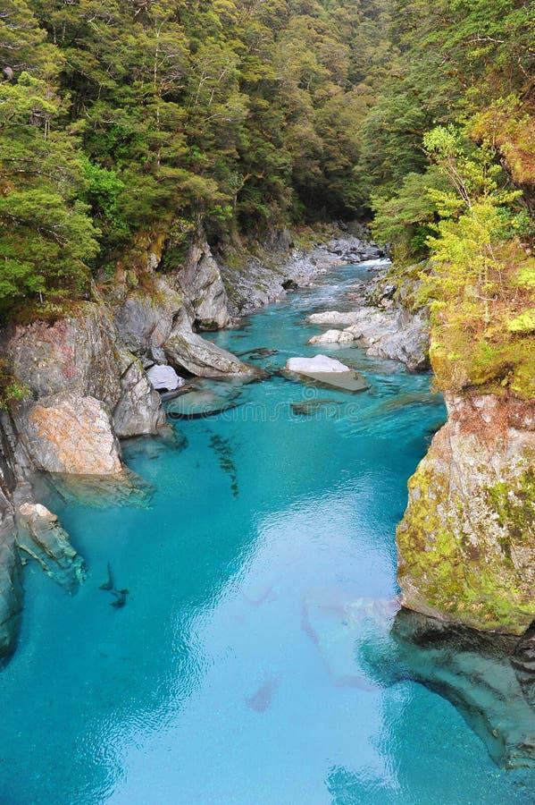 Regroupement bleu en Nouvelle Zélande photos stock