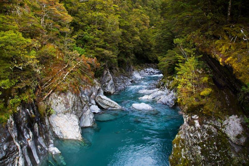 Regroupement bleu en Nouvelle Zélande images stock