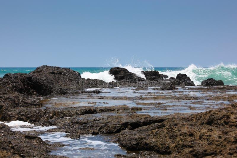 Regroupement de marée rocheux photos libres de droits
