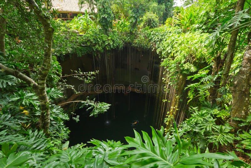 Regroupement Souterrain Ik-Kil Cenote Près De Chichen Itza Images libres de droits