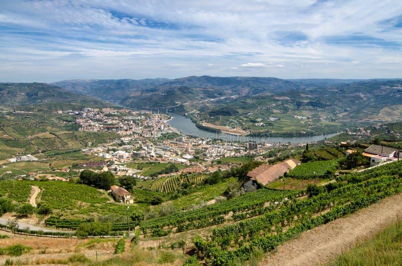 Regua,在杜罗河谷的vineyars 库存图片