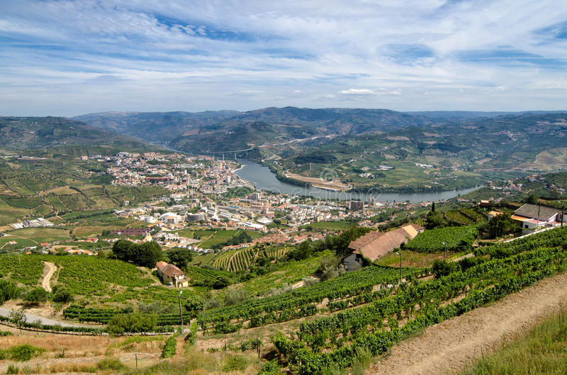 Regua, vineyars in Douro Valley. Regua, Terraced vineyards in Douro Valley, Alto Douro Wine Region in northern Portugal, officially designated by UNESCO as World stock images