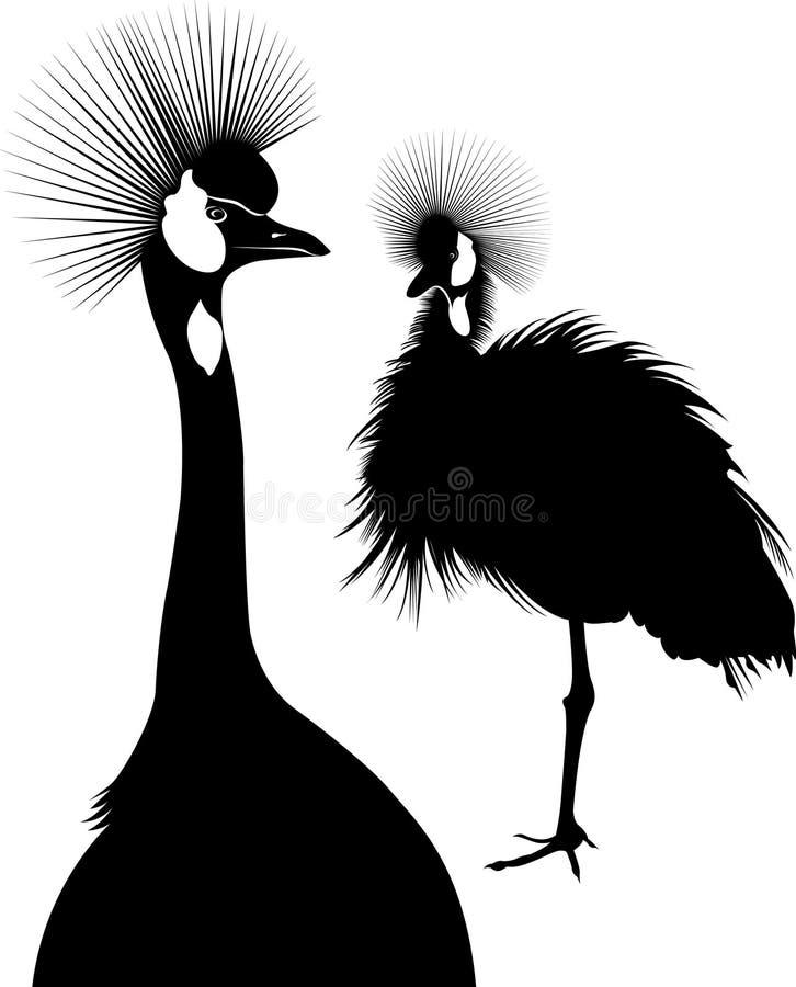 Regulorum van Balearica Vectorsilhouet van bevindende Bekroonde Kraan De kranen vogels royalty-vrije illustratie