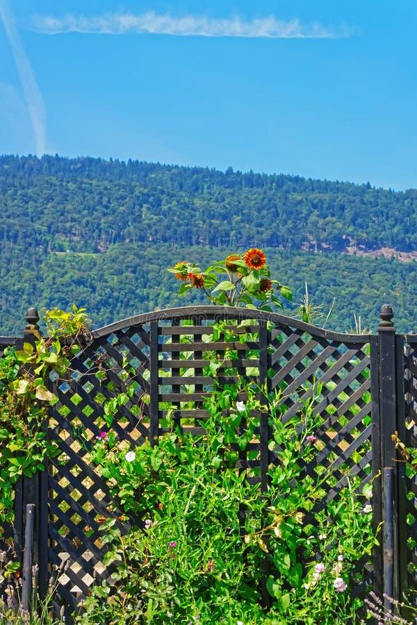 Reißen Sie Tor am Innenhof in Yverdon in der Schweiz hin lizenzfreies stockbild