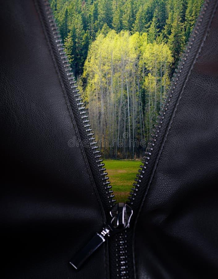 Reißverschluss in das Grün stockbilder