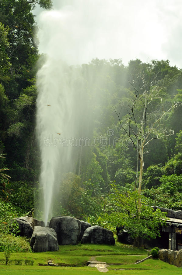 Reißzahn-heiße Frühlinge (Geysir bei Chiang Mai) stockbild