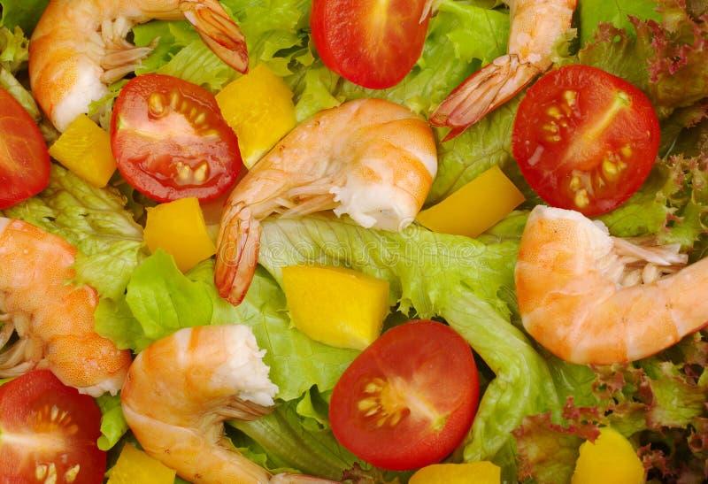Rei Camarão Salada foto de stock royalty free