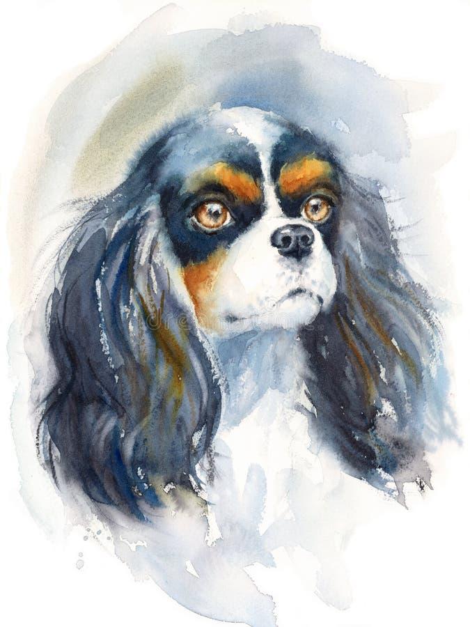 Rei Charles Spaniel que olha acima a ilustração animal da raça do cão da aquarela pintado à mão ilustração do vetor