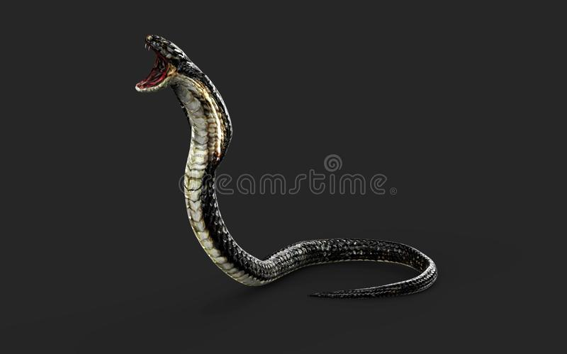 Rei Cobra Snake com trajeto de grampeamento ilustração stock