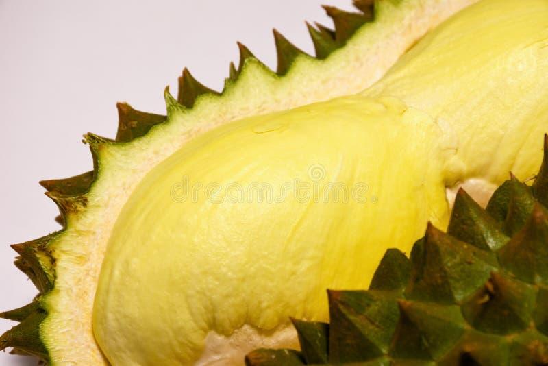 Rei fresco do durian dos frutos Fruto tropical descascado Durian foto de stock