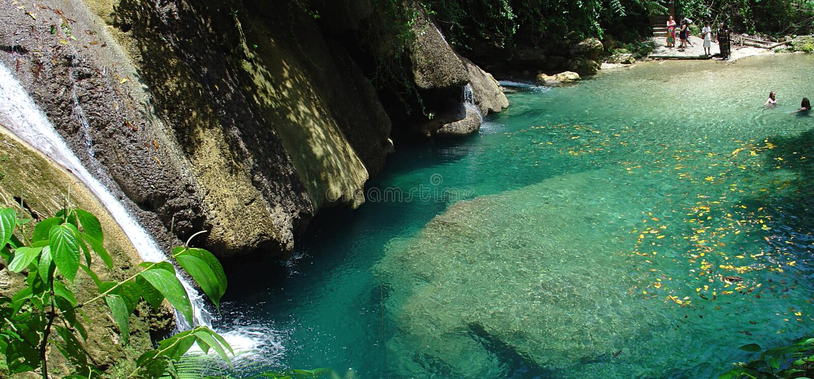 Download Reich Falls stock photo. Image of natural, reich, jamaica - 1413996