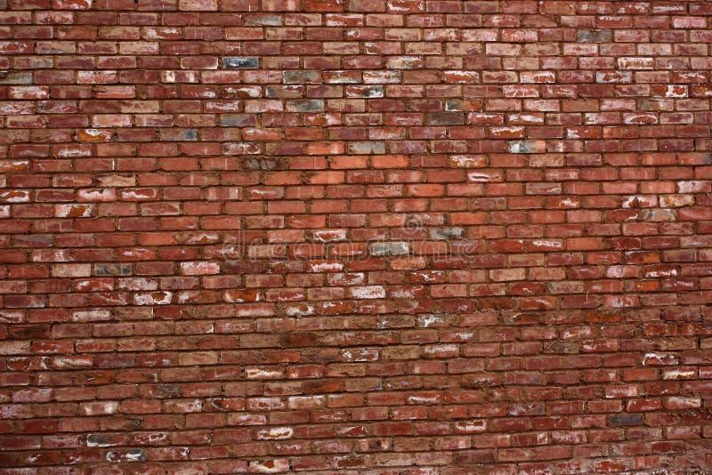 Reiche Backsteinmauer stockfotos