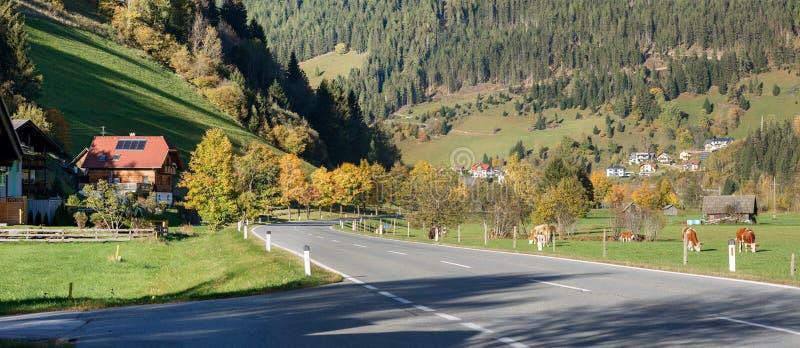 Reichenau的自治市的, F高山村庄Hinterkoflach 免版税库存图片