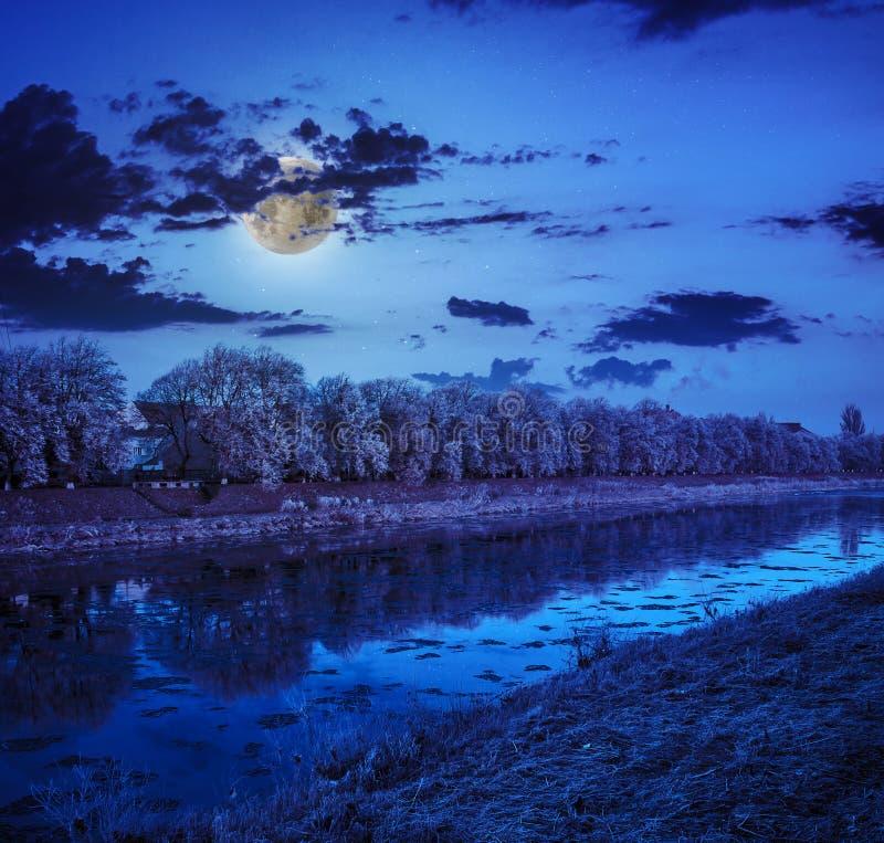 Reif auf einem Wintermitternacht mit Vollmond stockfotos