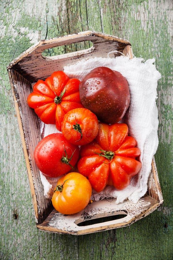 Reife frische bunte Tomaten in der Holzkiste stockbilder