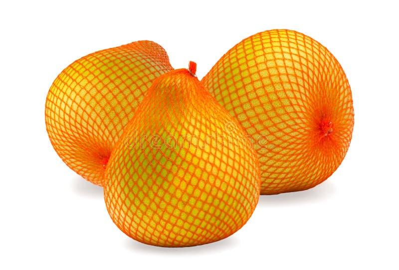 Reife Frucht drei der Pampelmuse im Paket lizenzfreies stockbild