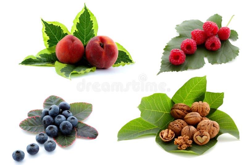Reife Fruchtansammlung lizenzfreie stockfotos