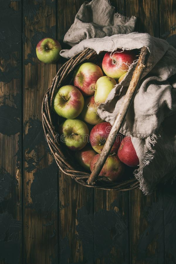 Reife Gartenarbeitäpfel stockfotografie