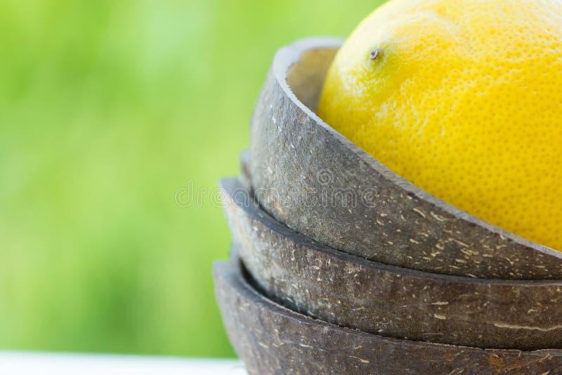 Reife gelbe Zitrone in der Kokosschaleschüssel auf grünem Laubhintergrund Gesunder Wellness Detox Lebensstil der organischen Kosm lizenzfreie stockfotos