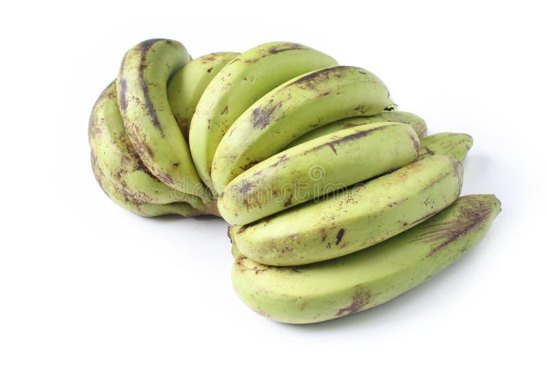 Reife grüne Banane lizenzfreie stockfotos