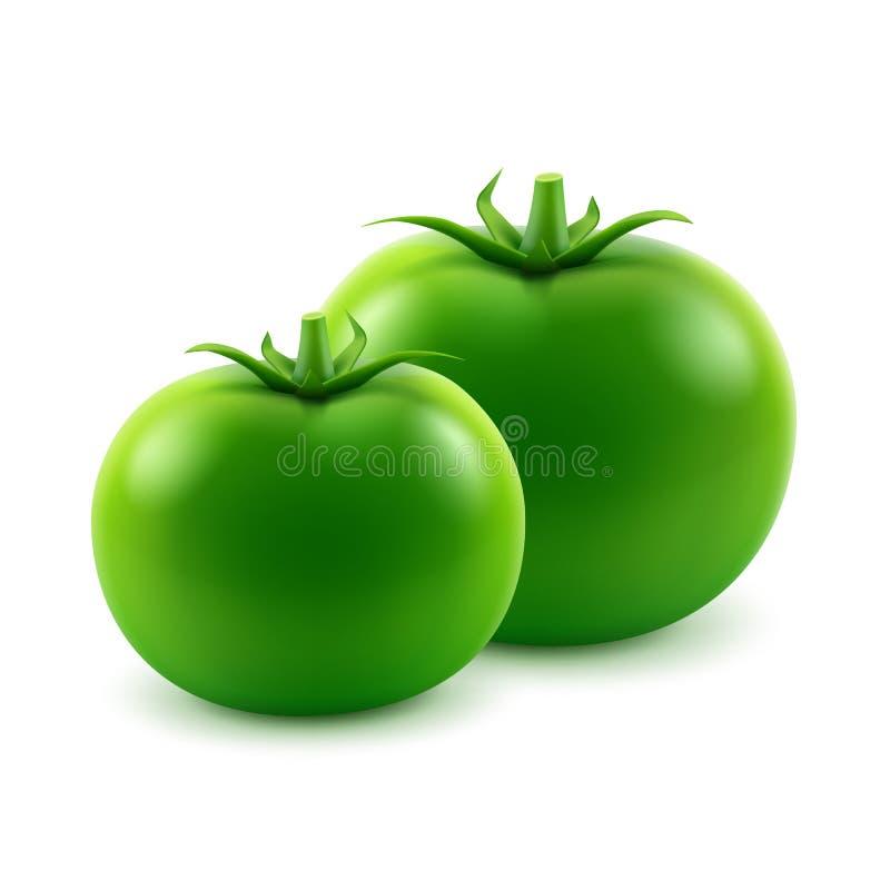 Reife grüne frische ganze Tomaten schließen oben auf weißem Hintergrund stock abbildung